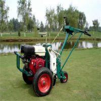 厂家供货草坪移植机 起草皮机 草坪机