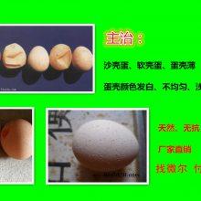 鸡蛋壳很薄怎么办增加蛋壳厚度药物