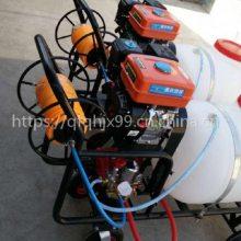高压喷雾器厂家 手推式打药机 桃园果树喷药机价格