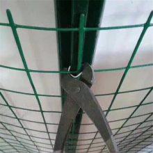 养殖围栏铁丝 绿色圈山网 圈果园铁丝网