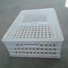 周转运输鸡笼 家禽运输专用筐 淘汰鸡笼规格吃菜