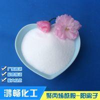 汉川市鸿畅阳离子聚丙烯酰胺处理污水如何选型