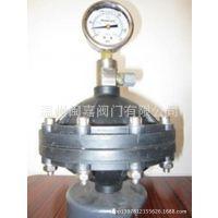 304空气式脉冲阻尼器 不锈钢304空气室式脉冲阻尼器