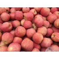 山东红富士苹果产区批发 颜色好价格便宜