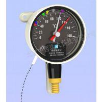 中西dyp 绕组温度计 型号:BWR-906HX库号:M407222