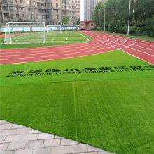 假草坪吊顶 高尔夫草坪 人造仿真草地