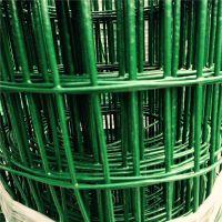 厂家供应波浪形养殖场圈地养鸡网 绿色不生锈荷兰网围地网