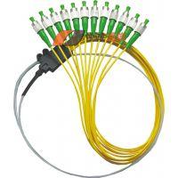 12芯束状尾纤FC、SC、ST