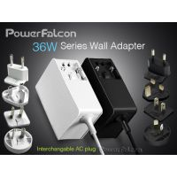 PowerFalcon 36W可换插墙适配器