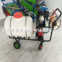 泰安联民供应 果园打药机手推式打药机农用自走式喷药机