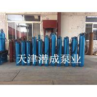 660v深井泵|大功率深井泵扬程的选择|200热水潜水泵