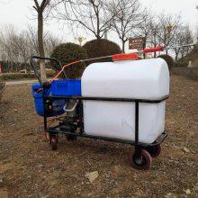 热销志成105L手推式电动喷雾器蔬菜大棚农用喷药机12V电瓶式打药机