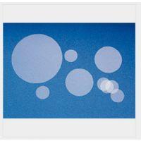 Fisherbrand细胞培养皿盖玻片1254582