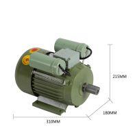 余龙220V1100W柴油泵自吸加油泵家用电汽油柴油普通电机 厂家直销