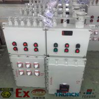 北京防爆箱厂家 腾达Bxm(d)非标定制照明动力配电箱