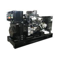 福沃20kw千瓦沼气发电机组 养殖场粪便污水处理专用燃气发电机