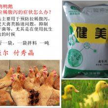 健美禽蛋禽饲料添加剂调节肠道