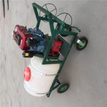 汽油高压喷雾器 四冲程拉管式打药机 稻田喷药机