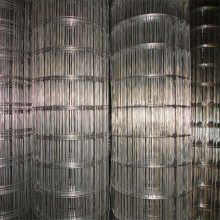热镀锌电焊网厂 镀锌电焊网 钢丝网