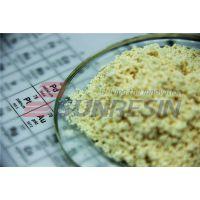 中国西安蓝晓科技大孔吸附树脂LX-60