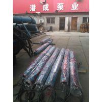 井用潜水电泵参数|天津潜成泵业井用潜水泵价格