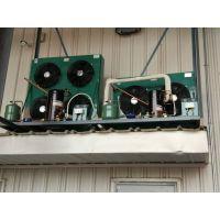 自贡低温冻库安装厂家,冻库报价,小型冷冻库安装