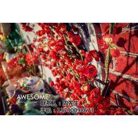 南海中式婚礼案例|AWESOME!