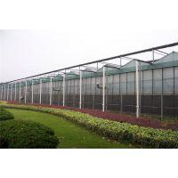 宁夏农业科技实验温室大棚玻璃型基地可抗10级大风建造企业