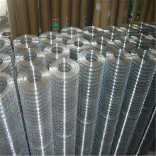 电焊网厂家 镀锌网电焊网 涂塑焊接网