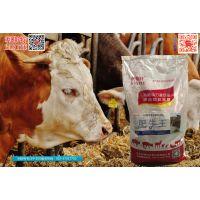 专业的牛羊饲料品牌——利斯特!咨询有礼!王经理13681475691