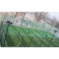 浸塑笼式足球场安全护栏网