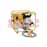 HPE-2D日本IZUMI汽油引擎复动式液压泵 万齐