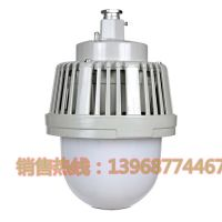 LED防爆固态照明灯/LED免维护防爆灯/GCD616