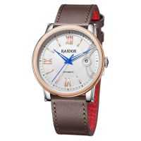 RAIDOX瑞度士手表 男士商务机械表 型号:R008046