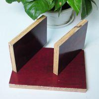 建筑模板 厂家直销 无中间环节 松木面桉木芯 表面光滑平整易脱模
