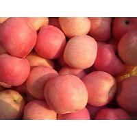 红富士苹果2元/斤无花果干22元/斤海鲜干货超值便宜