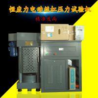 河北厂家 200吨加气砖电动丝杠伺服压力试验机 全自动压力机