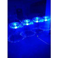 中山光纤水母灯,灯光节展示灯,水母灯制作