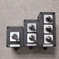 FZM-10A—220V三防照明开关单联双联旋转壁式开关