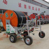 大功率农业移动式卷盘喷灌机 农田灌溉设备 多少钱呀