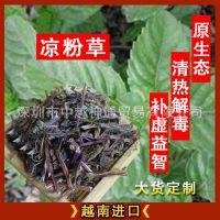 越南药材 进口凉粉草 切段 去泥 压包 仙人草 仙草 原生态 无污染