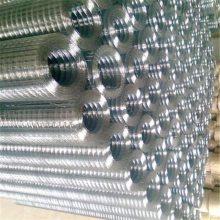 pvc电焊网工艺 粮仓电焊网 铁丝网围栏