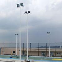 中山路灯灯杆厂家直销 雅浩篮球场照明配件 欢迎来电咨询13302599749