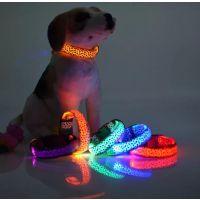 新品宠物用品豹纹发光项圈 狗狗 LED闪光狗带 斑点纹路荧光 狗项圈