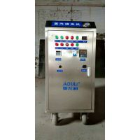 液化气手推多功能洗车机AOULI-M20高压蒸汽清洗机