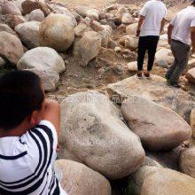 大鹅卵石多少钱一吨 永顺石家庄大鹅卵石厂家直销