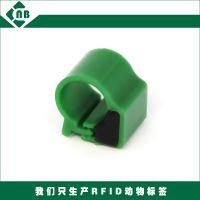 供应RFID鸽子脚环-ID电子脚环-134.2KHz电子耳标 RFID鸡鸭鹅脚环