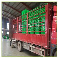 240L户外塑料垃圾桶 物业室外垃圾桶 240升分类果皮箱 厂家批发