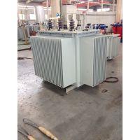 生产各种型号电力变压器