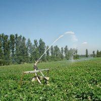 农业灌溉 大田喷灌机 绞盘式喷灌机 节水省工 霖丰农业